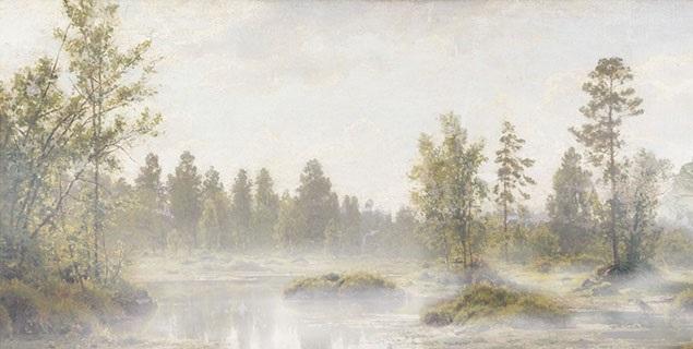 marshes.jpg